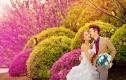 洛丽塔2088元婚纱摄影